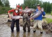 AlaskaJuneJuly2008