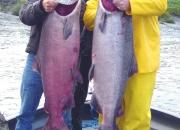 alaska-king-salmon-14