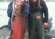 alaska-king-salmon-18