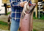 alaska-king-salmon-36