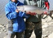 alaska-red-salmon-3