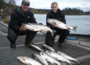 alaska-silver-salmon-2