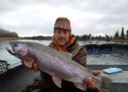 alaska-trout