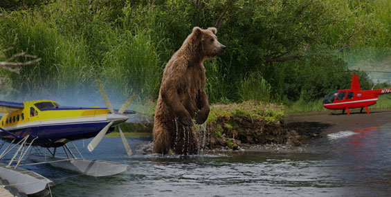 Alaska Fly-in Fishing & Bear Viewing